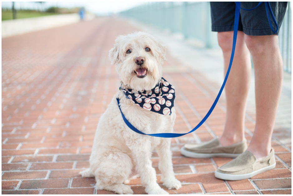 engagement session downtown pensacola florida puppy furbaby dog pet family baseball red white blue water city reflections macro_0002