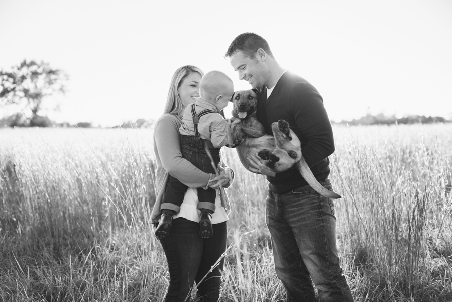 family session field florida fall puppy furbaby christmas sunset_0010
