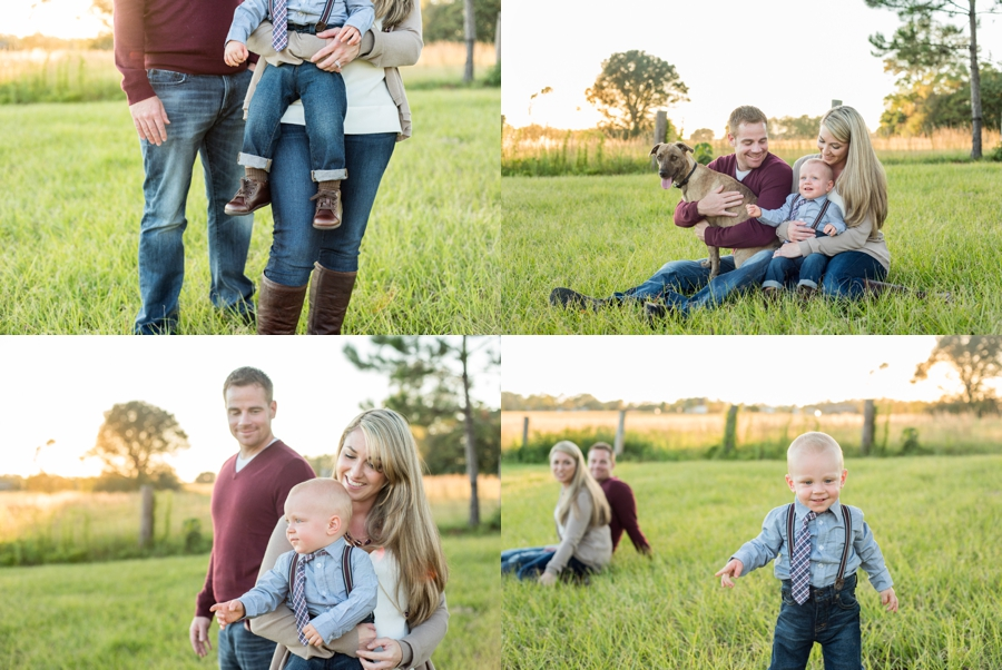 family session field florida fall puppy furbaby christmas sunset_0013