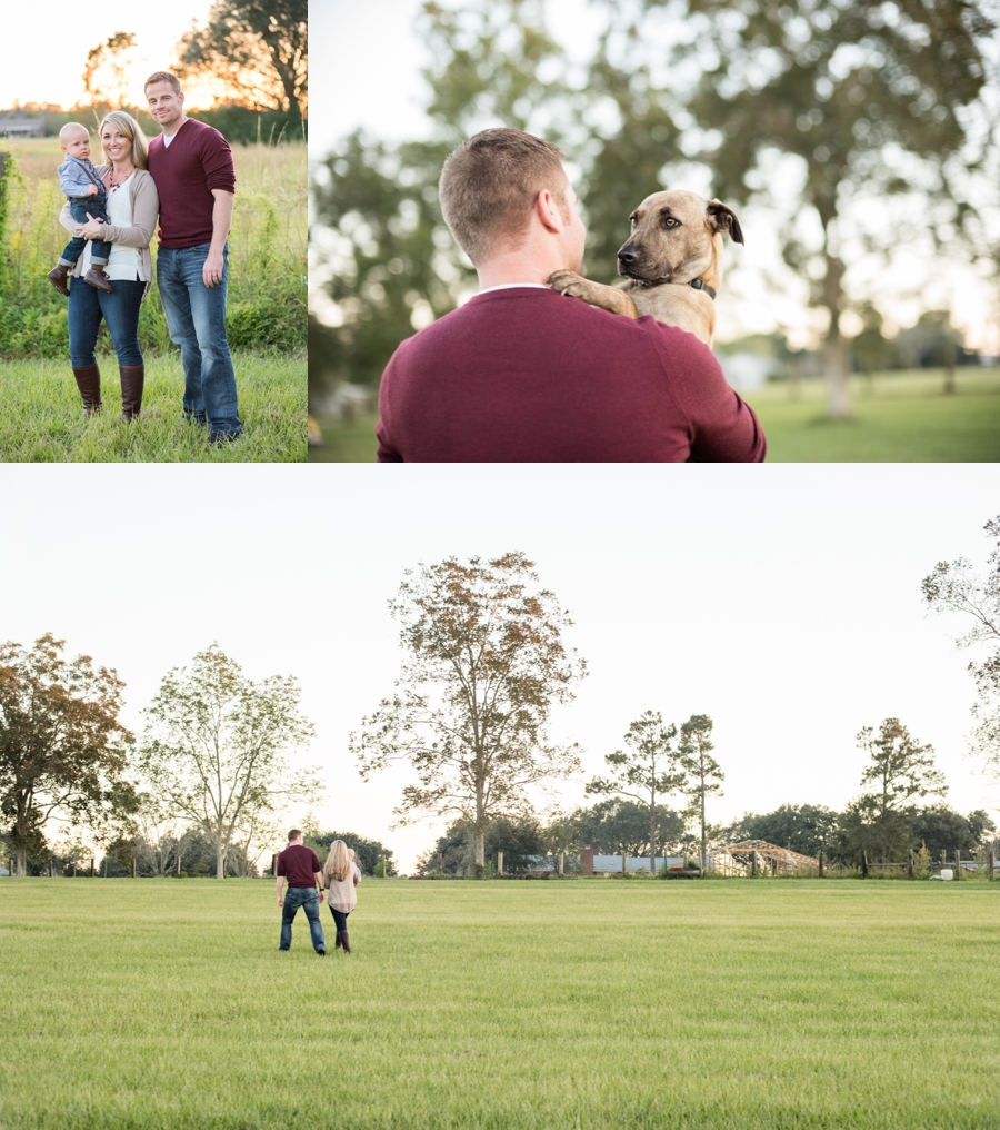 family session field florida fall puppy furbaby christmas sunset_0017