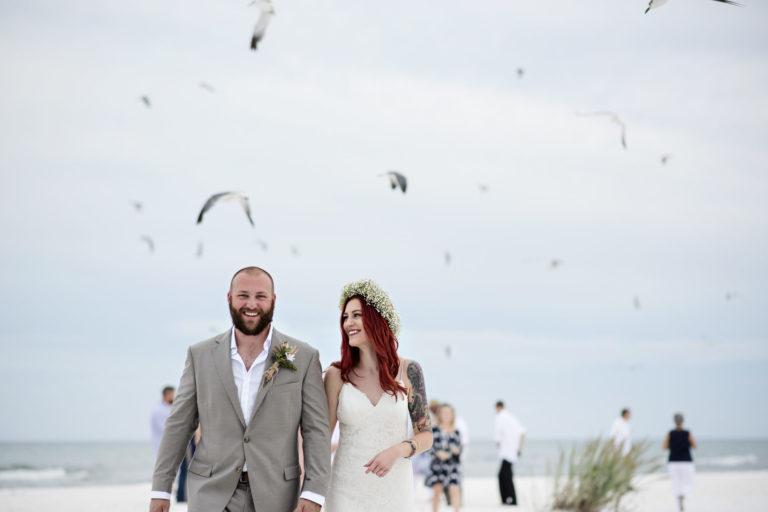 taylor aaron birds