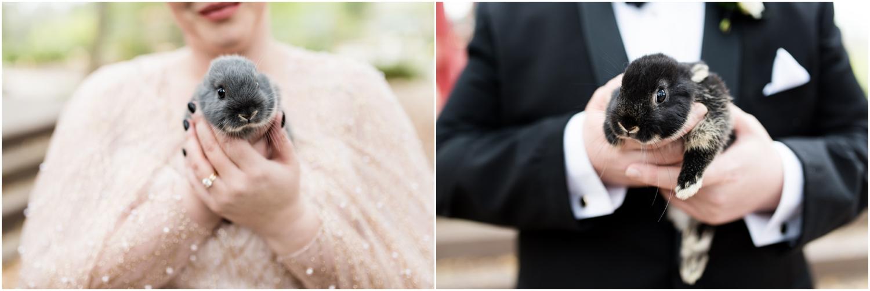 Coldwater Gardens woodsy wedding milton florida photographer bunnies bride groom